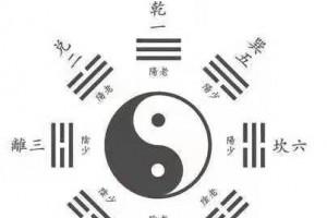 阳辉君 解读《易经》卦象演变规律,是解开一疑难病的金钥匙